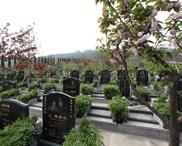 重庆市南岸区灵安陵园 第20张