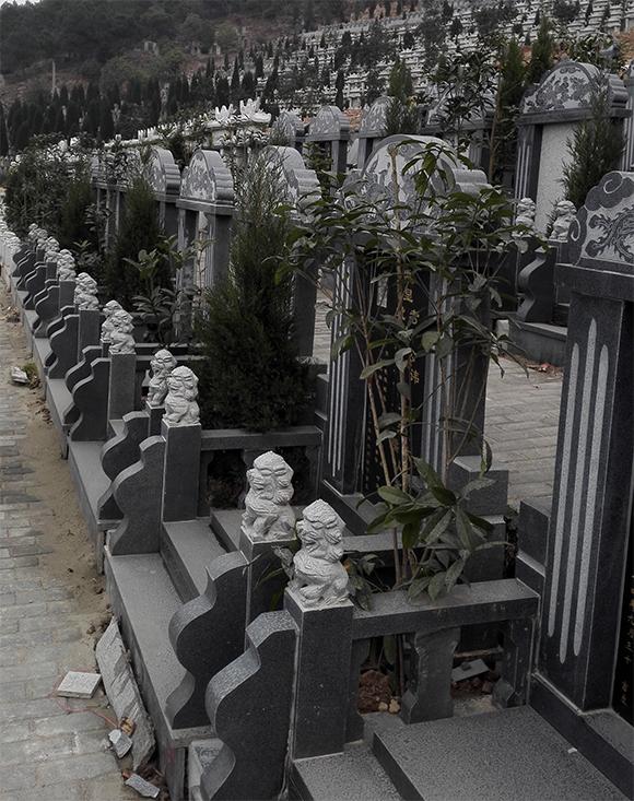 重庆九龙坡仙友山公墓 第4张