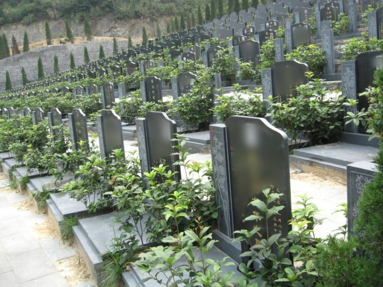 重庆市巴南区金山公墓 第11张