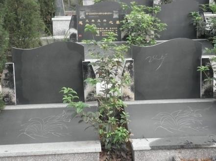重庆市巴南区金山公墓 第7张