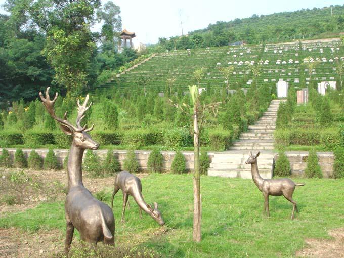 重庆九龙坡龙台山陵园 第9张