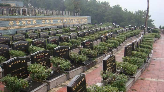 重庆市南岸区灵安陵园 第13张