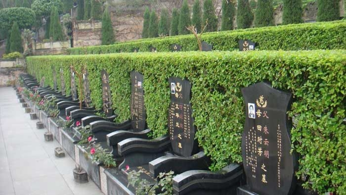 重庆市南岸区灵安陵园 第15张