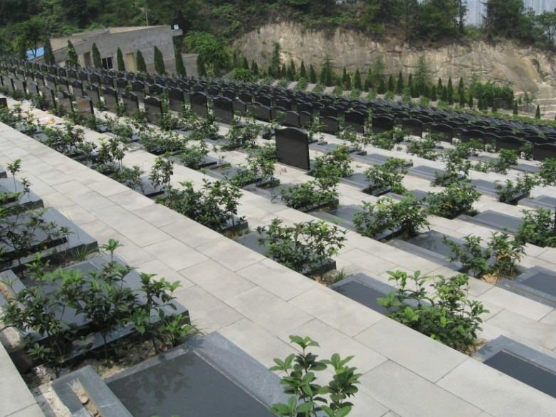 重庆市巴南区金山公墓 第17张