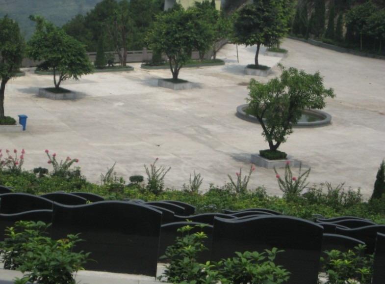 重庆市巴南区金山公墓 第18张