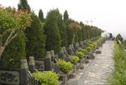 重庆市南岸区灵安陵园 第17张