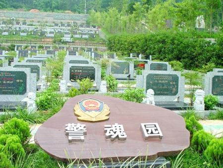 重庆南岸区南山龙园 第21张
