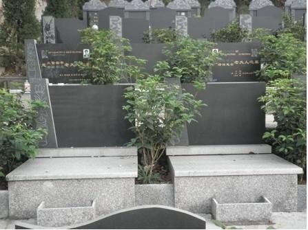重庆市巴南区金山公墓 第3张