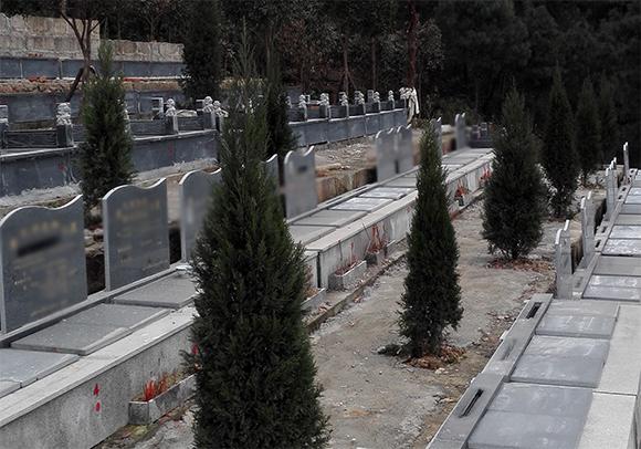 重庆九龙坡仙友山公墓 第11张