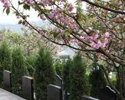 重庆市南岸区灵安陵园 第21张