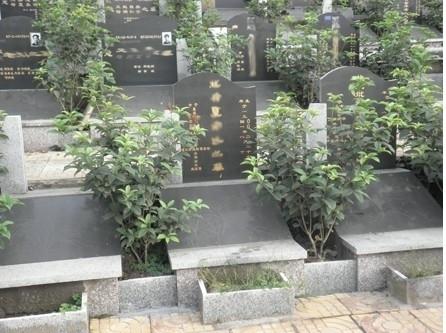 重庆市巴南区金山公墓 第5张