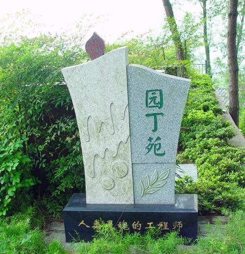 重庆南岸区南山龙园 第18张
