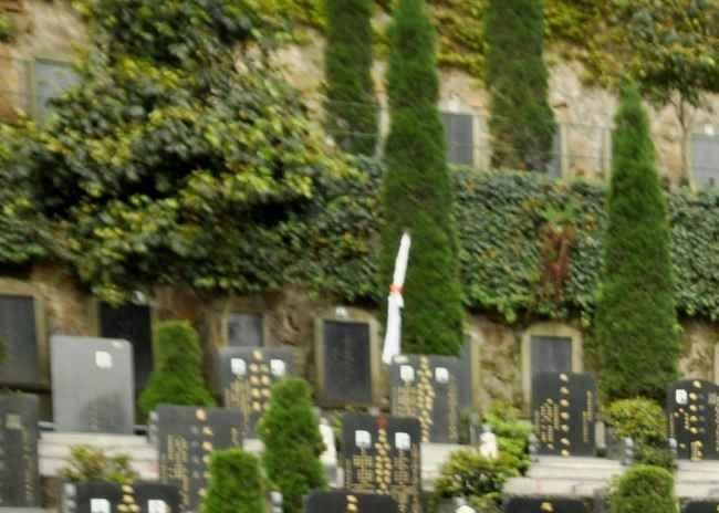 重庆市洪家坡公墓 第8张