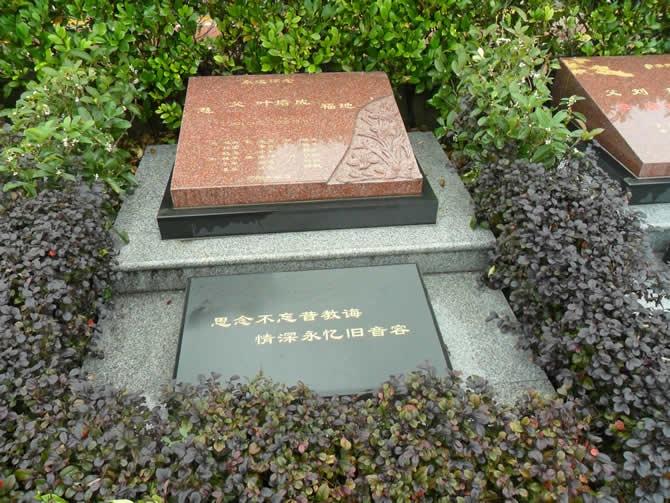 重庆南岸区南山龙园 第10张
