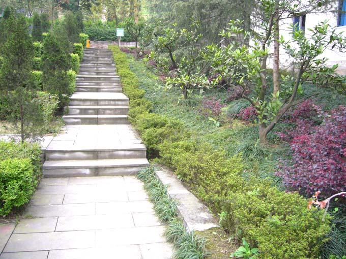 重庆九龙坡龙台山陵园 第10张