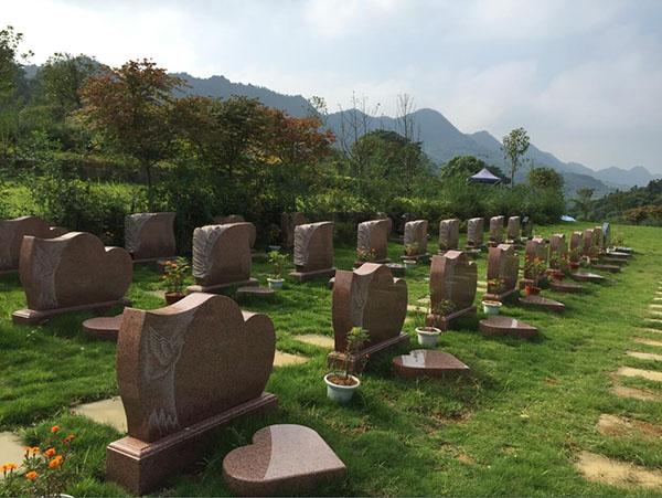 重庆市巴南区仙人堂生命纪念园 第3张