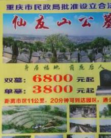 仙友山公墓,单墓3800起,专车接送免费参观 第1张