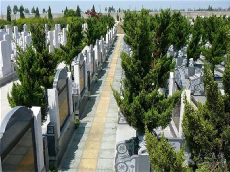 重庆艮灵山公墓公墓,市大型公益性公墓(价格亲民) 第3张