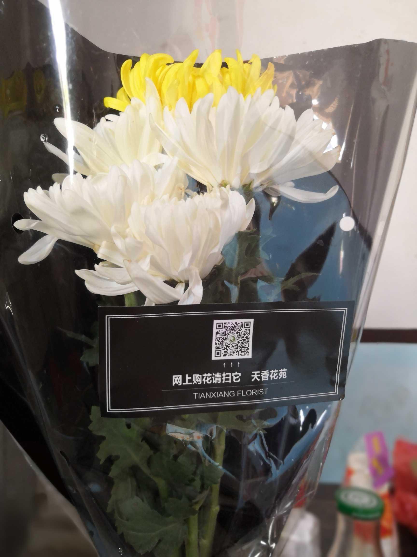 清明节的鲜花 第1张
